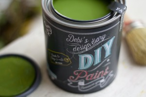 Fancy Farm Girl DIY Paint
