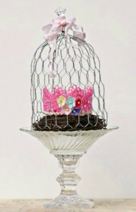 chicken wire cloche 2